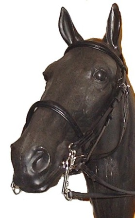 Wyvern Weymouth Dressage Double Bridle