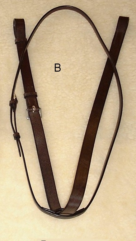 Wyvern Standing Martingale